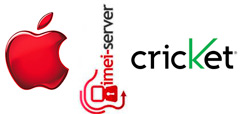 Unlock USA Cricket iPhone